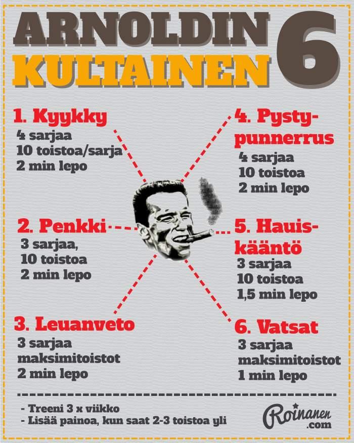 Arnoldin kultainen kuusikko -infograafi