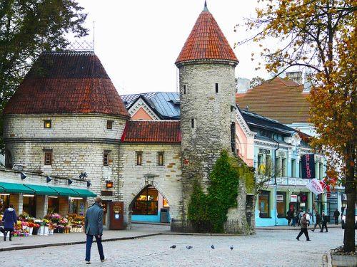 Tallinnan hintataso